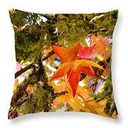 Mossy Lichen Tree Leaves Art Prints Autumn Throw Pillow