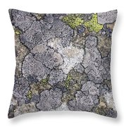 Mossy Mouldy Rock Texture Throw Pillow