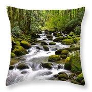 Mossy Mountain Stream Throw Pillow