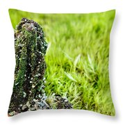 Mossy Outcrop Throw Pillow