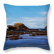 Mossy Point 375 Throw Pillow
