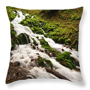 Mossy River Flowing. Throw Pillow