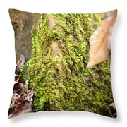 Mossy Rock Abstract 2013 Throw Pillow