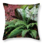 Mossy Rock And Fern Throw Pillow