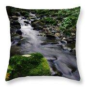 Mossy Rock Streamside Throw Pillow