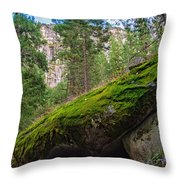 Mossy Rocks Along Vernal Falls Trail Throw Pillow