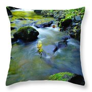 Mossy Rocks And Moving Water  Throw Pillow