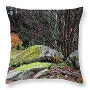 Mossy Rocks Garden Throw Pillow