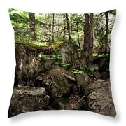 Mossy Rocks In The Forest Throw Pillow