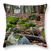 Mossy Rocks Throw Pillow