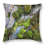 Mossy Rocks Throw Pillow