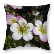 Mossy Saxifrage Flower Carpet Throw Pillow