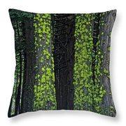 Mossy Sentinels Throw Pillow