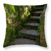Mossy Steps Throw Pillow