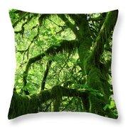 Mossy Tree Throw Pillow by Athena Mckinzie