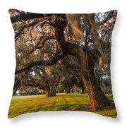 Mossy Trees At Sunset Throw Pillow