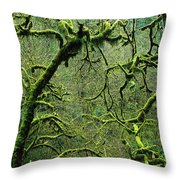Mossy Trees Leafless In The Winter Throw Pillow