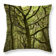 Mossy Welsh Forest  Throw Pillow