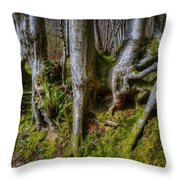 Mossy Woodland  Throw Pillow
