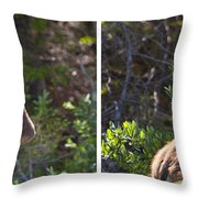 Mother And Baby Moose Throw Pillow
