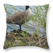 Mother And Child Canadian Geese Throw Pillow