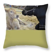 Mother And Child Hand Embroidery Throw Pillow by To-Tam Gerwe