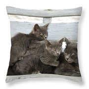 Cat And Kittens Throw Pillow