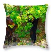 Mother Bear And Cub Throw Pillow