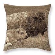 Mother Buffalo And Calf Sepia Throw Pillow