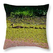 Mother Duck And Baby Ducks Throw Pillow