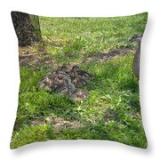 Mother Duck With Nest Throw Pillow