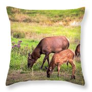 Mother Elk With Her Young Throw Pillow