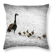Mother Goose Throw Pillow by Elena Elisseeva