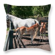 Mother Horse With Twin Colts Throw Pillow