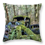Mother Nature Rules Supreme Throw Pillow