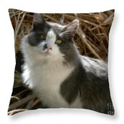 Mother Natures Son Throw Pillow