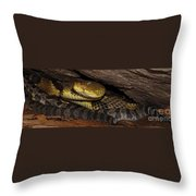 Mother Snake Throw Pillow