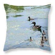 Mother Wood Duck Throw Pillow