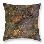 Mothers Abstract 06 Throw Pillow