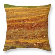 Mothers Abstract 08 Throw Pillow
