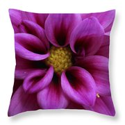 Mothers Flowers Throw Pillow
