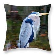 Motionless Throw Pillow