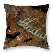 Motorcycle Axe Murderer Throw Pillow