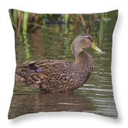 Mottled Duck Drake Throw Pillow