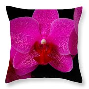 Mottled Orchid 8 Throw Pillow