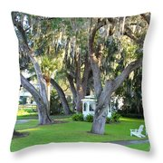 Mount Dora Throw Pillow by Carey Chen