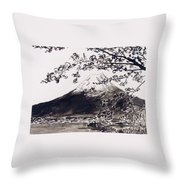 Mount Fuji Spring Blossoms Throw Pillow