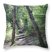 Mount Hancock Hiking Trail New Hampshire Throw Pillow