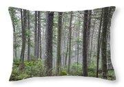 Mount Jim - Kinsman Notch New Hampshire Throw Pillow