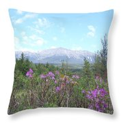 Mount Katahdin And Wild Flowers Throw Pillow